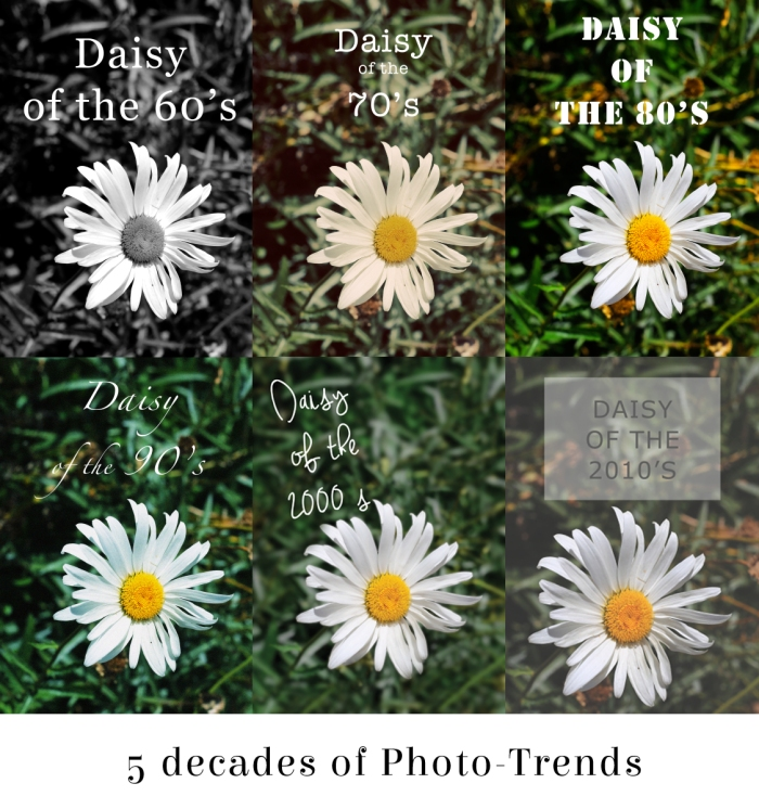 5 decades of photo trends