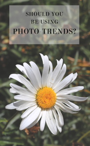 using photo trends